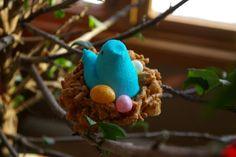 Edible Nests