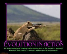 Evolution In action