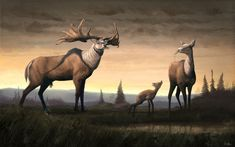 Megaloceros giganteus - The Irish Elk Prehistoric World, Prehistoric Creatures, Irish Elk, Game Of Thrones Art, Extinct Animals, Large Animals, Fauna, Wildlife Art, Fossils