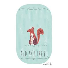 squirrel illustration - Google Search