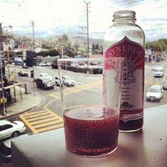 Gt's Kombucha Raspberry Chia Kombucha Brands, Kombucha Tea, Slot Machine, Chia Seeds, Things To Buy, Fitspiration, Vodka Bottle, Raspberry, Instagram Posts
