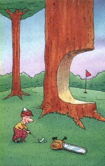 "Last time we golfed, I asked Caroline, ""Who the hell put that bloody tree there?"" This reminds me of that.:"