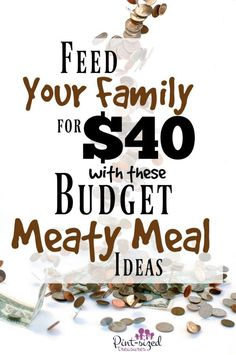 Healthy Eating on a Dime: Eat Clean, Lose Weight, and Live Healthier Even If You Are On A Tight Budget - Get Clean Eating Meals For Four, Meals For The Week, Frugal Family, All Family, Frugal Living, Inexpensive Meals, Cheap Meals, Frugal Meals, Budget Meals