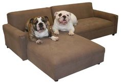 Another wonderful piece of dog furniture, I think even I could fit on there with them, made in USA.