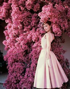 Audrey Hepburn for Vogue | 1955