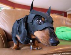 Shhhhh.....I'm Batman.