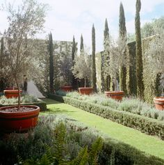 gorgeous garden space - OMG, I Want This House: Mexico (Photos) - The Daily Beast#1d906fc3-6e64-4b1c-8ce7-9096051a1854#1d906fc3-6e64-4b1c-8ce7-9096051a1854