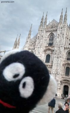 The funny Bee Gnoramà flying in Piazza Duomo! #piazzaduomo #milano #gnoraaroundtheworld