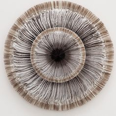 Oscilate from pigeon wing feathers by Kate MccGwire.