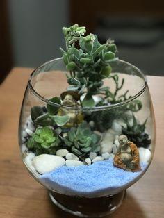 """My second terrarium ... """" terrarium idea """""""