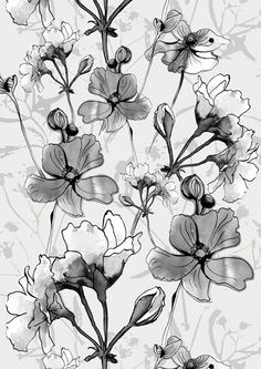 Sophie Thompson Design