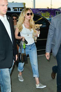 Jennifer Lawrence With Her Dog | Pictures | POPSUGAR Celebrity