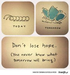 the end of the world for a caterpillar is a butterfly!