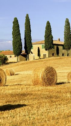 Tuscany, Italy http://www.florencetravelapp.com/  | by eTips Travel Apps http://www.etips.com/