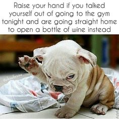 Raise your hand if you talked yourself out of going to the gym tonight - Diet and Fitness Humor, Fitness Memes, Gym Memes, Diet, Weight Loss, Fat, Fat Loss, Crossfit, Exercise, Workout, Fit Girls, Fitbit, Girls, Cardio,Training, Beachbody, Health, Gains, Squats, Yoga, Protein, Sweat, Flex, Weights, Fit, Fitness, Muscles, Active, Body Building, Abs, Biceps, Legs, Fit Mom, Fat, Fat Loss, Bootcamp, Wine, Wine Lovers, Red Wine, White Wine, Atlanta, Los Angeles, New York, Washington DC, Miami…