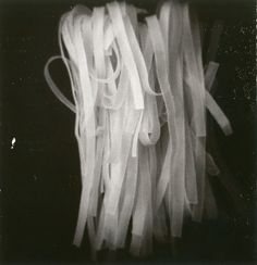 Holga Still Life by Scott Peterson
