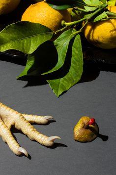 MAURIZIO DI LORIO - Food Photgraphy