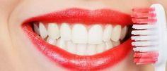 Disa fakte që nuk i keni ditur për dhëmbët - Smalti ose  pjesa sipërfaqësore e dhëmbit është substance organike me e fortë në trup. Vetëm në hapsirën e gojës ndodhen mbi 300 lloje të bakterieve.
