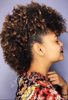 80 best Natural Hair Mohawk Hairstyles images on Pinterest in 2018 ...