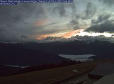 Hurrican Ridge webcam