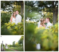 Nassau Valley Vineyard Wedding || Lewes, DE Wedding || Vineyard Wedding || Ashley Eiban Photography || www.ashleyeiban.com