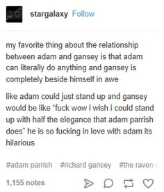 It's true. lol Adam, in Gansey's eyes is an amazing thing to behold. I love how much Adam's friends admire and love him because that kid has no self-worth; he doesn't realize how amazing he truly is. I think he eventually figures it out and will work it out. #TheRavenCycle #AdamParrish #RichardGanseyIII