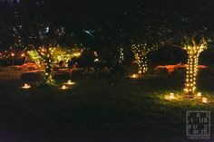 family backyard wedding Madison WI outdoor garden setup and decorations at night time