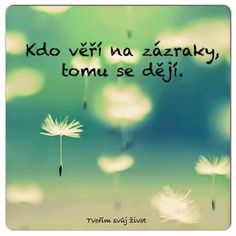 Beauty :-) ► Forward it ◄- Krása 🙂 ► Pošli to dál ◄ Beauty :-] ► Forward it ◄ - My Life Quotes, Some Quotes, Foto Blog, Motivational Quotes, Inspirational Quotes, Life Thoughts, Wallpaper Quotes, Believe In You, Funny Texts