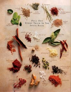 'Pull Out  Everu Trick in the Spice Rack' -Herbs & Spices by johanzammit: Click through for an informative article. Beautiful image from a magazine ad? #Infographic #Illustration #Spices