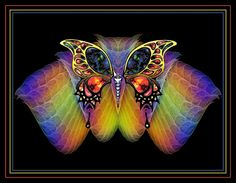 Butterfly with fractal