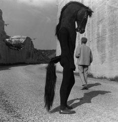 Lucien Clergue • Jean Cocteau Croise l'Homme-cheval. Tournage du Testament d'Orphée. Les Baux de Provence 1959
