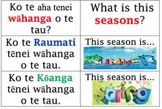 Springston Te Reo : Seasons of the Year