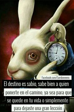Login to Minds or create a channel Triste Disney, Cute Spanish Quotes, Eye Illustration, Alice And Wonderland Quotes, Alice Madness, Positive Phrases, Sad Love Quotes, Tim Burton, Bts Memes