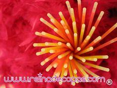 26 mejores imágenes de Pulseras Luminosas 8956265ec89