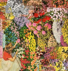 flowers everywhere