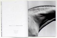 Steven Klein's Horses 1999