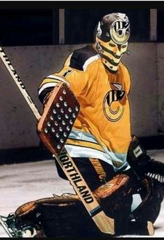 Mike Liut as a Cincinnati Stinger Flyers Hockey, Women's Hockey, Hockey Girls, Hockey Rules, Hockey Stuff, American Football Rules, American Football League, Goalie Mask, Best Masks