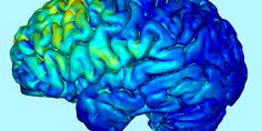 The Unfinished Science Behind the New Wave of Electrical Brain Stimulation