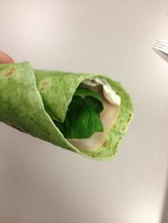 Spinach Lunch Wraps