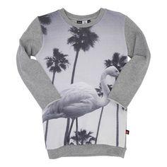 e0501125f Molo Kids Molo Coco Dress - Grey Melange | MonkeyMcCoy White Flamingo,  Flamingo
