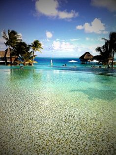 Bora Bora... honeymoon @Leandro Ferraz?!