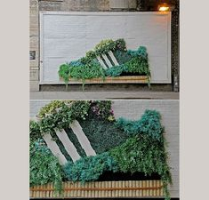 Adidas shoe garden. talking about keeping your shoes green:)