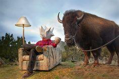 shapehead w buffalo