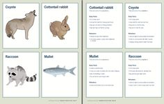 This teacher's guide on animal adaptations contains sorting cards and a number of lesson plans. Appropriate for grades 3-5.