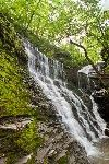 Jackson Falls on the Natchez Trace- photo by Marc Muench