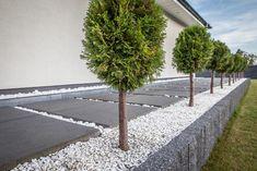 House Landscape, House Front, Walkway, Sidewalk, Gardening, House Design, Garden, House, Side Walkway