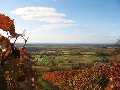 Wanderung in der hessischen Bergstrasse Monument Valley, Vineyard, Nature, Travel, Outdoor, Hessen, Paradise, Wine, Round Round