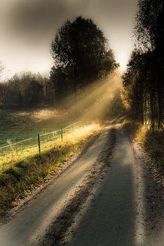The sun breaks through the morning fog (Sweden) by Jan Puuraid cr.c.