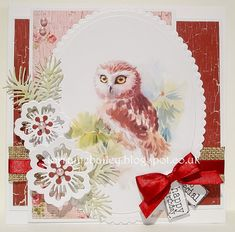 LOTV - Little Owl - by Lorraine Bailey