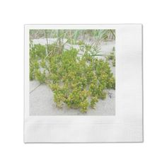 #Green plants at the beach napkin - #beach #travel #beachlife